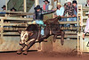 1997 RODEOS : 49 galleries with 707 photos