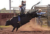 1998 RODEOS : 50 galleries with 971 photos