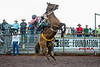 PANAEWA STAMPEDE RODEO 2013 : 18 galleries with 656 photos